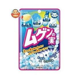 クラシエフーズ ムゲンの実 ソーダ味 (19g)
