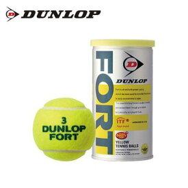 ダンロップ 硬式テニスボール 2球 フォート DFDYL2DOZ