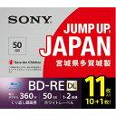 ソニー 11BNE2VPPS2 BD-RE ビデオ用ブルーレイディスク くり返し録画用 50GB 2倍速 11枚入
