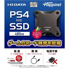 PS4対応 外付け SSD 480GB HNSSD-480BK