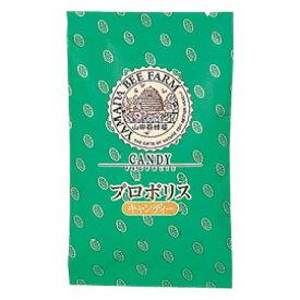 【山田養蜂場】プロポリスキャンディー 100g入(24-26粒) ギフト プレゼント 食べ物 食品 健康 人気 健康 お取り寄せグルメ 高級