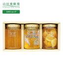 【6月29日23:59まで早割価格】【山田養蜂場】厳選蜂蜜・果実漬2本セットはちみつ 蜂蜜 食べ物 食品 詰め合わせ 健康お…