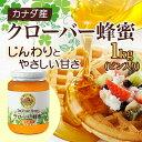 【山田養蜂場】クローバー蜂蜜(カナダ産) 1kgビン入 ギフト プレゼント 食べ物 食品 はちみつ 健康 人気