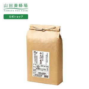 【山田養蜂場】れんげ米 【玄米】3kg 米 ごはん ギフト プレゼント 食べ物 食品 人気 健康 お取り寄せグルメ 高級 有機 もちもち 御中元 お中元