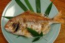 料亭の味をご家庭へお届け致します豊後水道大分県産 天然鯛の姿焼き一尾4〜5人前サイズ【楽ギフ_のし】