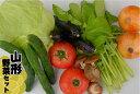【送料無料】毎週火曜発送 野菜セット 7品目以上