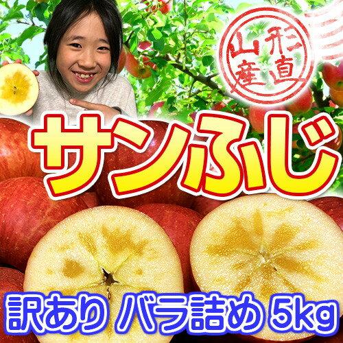 山形のりんごはうまいずね〜山形県産 サンふじ 訳あり 約5kg バラ詰め【予約販売】