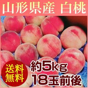 【送料無料】山形の白桃はうまいずね〜山形県産 白桃 約5kg (18玉前後) 【予約販売】