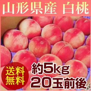 【送料無料】山形の白桃はうまいずね〜山形県産 白桃 約5kg (20玉前後) 【予約販売】