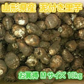 山形県産 泥付き 里芋 さといも 1箱 お徳用 Mサイズ 10kg【山形産 泥付き サトイモ 里芋 芋煮 さといも お徳用 約10kg Mサイズ ご家庭用】
