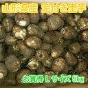 山形県産 泥付き 里芋 さといも 1箱 お徳用 Lサイズ 5kg【山形産 泥付き サトイモ 里芋 芋煮 さといも お徳用 約5kg L…