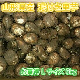 山形県産 泥付き 里芋 さといも 1箱 お徳用 Lサイズ 5kg【山形産 泥付き サトイモ 里芋 芋煮 さといも お徳用 約5kg Lサイズ ご家庭用】