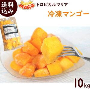 冷凍フルーツ 業務用 冷凍マンゴー 送料無料 冷凍マンゴー 10kg(500g×20袋) 冷凍 トロピカルマリア マンゴー スムージー ジュース アップルマンゴー まとめ買い