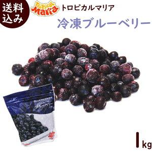 冷凍フルーツ 業務用 冷凍ブルーベリー 送料無料 冷凍ブルーベリー1kg(500g×2袋) 冷凍 ブルーベリー トロピカルマリア スムージー ジュース