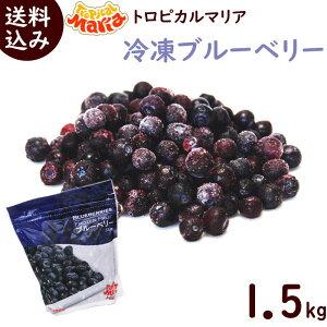冷凍フルーツ 業務用 冷凍ブルーベリー 送料無料 冷凍ブルーベリー 1.5kg 500g×3袋 冷凍 ブルーベリー トロピカルマリア スムージー ジュース