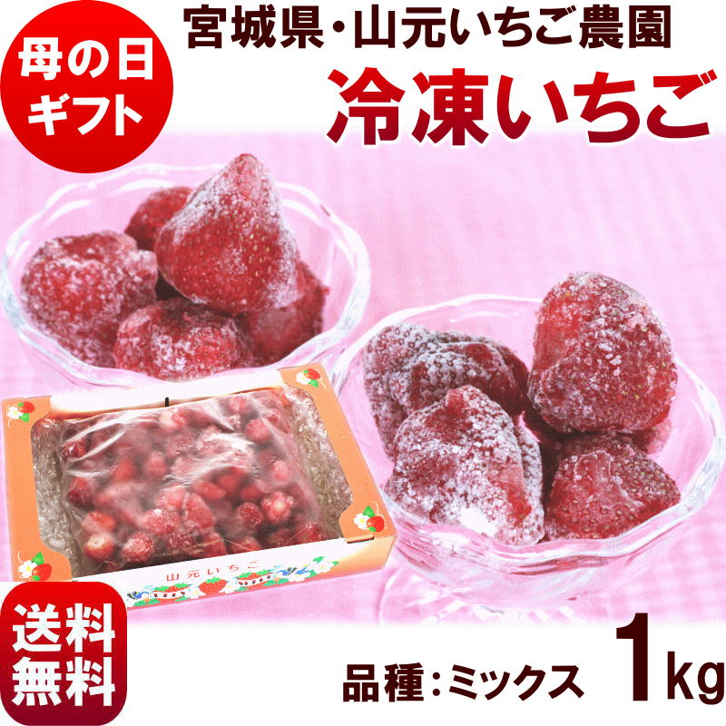 母の日 ギフト 送料無料 【宮城県 山元いちご農園 冷凍いちご 1kg (約30個) 】