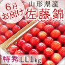 さくらんぼ 佐藤錦 山形県産 特秀LL1kg詰 500g×2P 送料無料