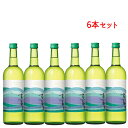 白ワイン 高畠ワイナリー 2019 高畠新酒 白辛 720ml x6本セット ワイン 高畠ワイン