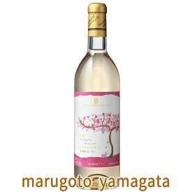 予約販売 10月発売 朝日町ワイン 2021年 無濾過山形デラウエア白甘口 ヌーボー 新酒 ヌーヴォー GI山形 GI YAMAGATA