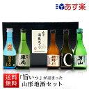 遅れてごめんね 父の日 ギフト プレゼント 日本酒 飲み比べセット 300ml×5本セット 山形 地酒 辛口 送料無料