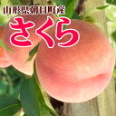 [9月お届け] 山形県朝日町産 特大 かための桃 さくら2.5kg(4〜8玉)【生産者直送のためほかの商品と同梱不可】 母の日ギフト