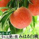 桃 特大 硬い桃 みはる白桃2.5kg(6〜8玉)(美晴白桃) 送料無料 9月お届け 山形県朝日町産 生産者直送他の商品と同梱不可