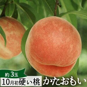 10月初めお届け 桃 特大 硬い桃 硬おもい 約1kg(3玉) 山形県朝日町産 送料無料 かたい桃