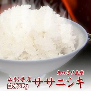 新米令和元年産 山形県産 ササニシキ 白米 5kg 1等米 送料無料