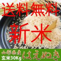 新米30年産 はえぬき 30kg 本場山形の1等米 玄米 食味ランキング22年連続特Aのこめ/コメ 地域限定送料無料