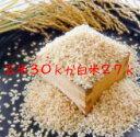 新米令和元年産 はえぬき 30kg 本場山形の1等米 玄米 食味ランキング22年連続特Aのこめ/コメ 地域限定送料無料