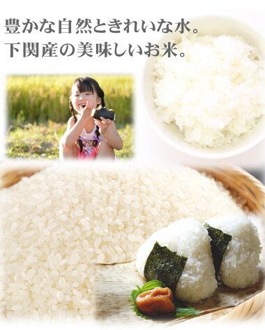 山口県下関産の美味しいお米(5kg)送料無料お米白米新米米コメ