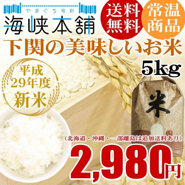 山口県下関産の美味しいお米(5kg) 送料無料 29年産 新米 お米 白米 貴飯米 米 コメ