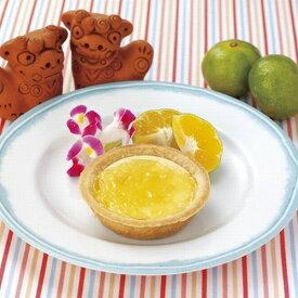 【学校給食】【日東ベスト】【冷凍食品】【学校給食】お米de沖縄県産シークヮサータルトX80個