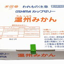 【大島食品】【学校給食】カップゼリー 温州みかん 65g×40個