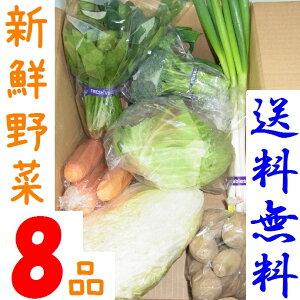 山口・九州産【送料無料】 『新鮮野菜の詰め合わせ8種類』(玉ねぎ・キャベツ・ピーマン・ほうれん草・きゅうり他)