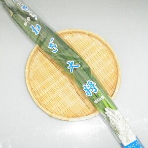 福岡県産『小ねぎ(万能ねぎ・ヤッコネギ)』【野菜詰め合わせセットと同梱で送料無料】