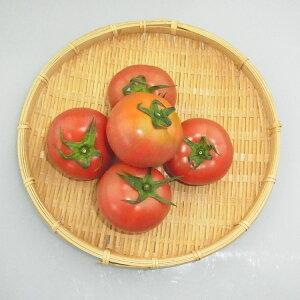 熊本県産『トマト』【野菜詰め合わせセットと同梱で送料無料】
