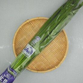 高知県産『ニラ(にら・韮)』【野菜詰め合わせセットと同梱で送料無料】