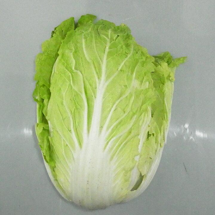 熊本県産『白菜(ハクサイ・はくさい)1玉』【野菜詰め合わせセットと同梱で送料無料】