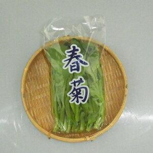 山口県産『春菊(しゅんぎく)』【野菜詰め合わせセットと同梱で送料無料】