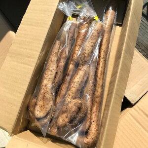 山口県産『自然薯(自生種)』2kg(山芋・じねんじょ・天然種)