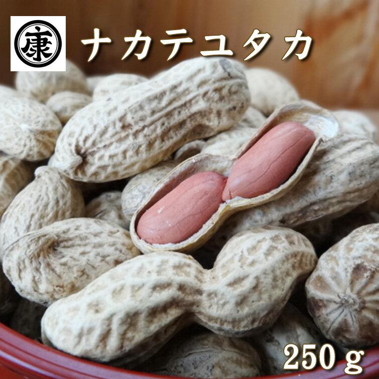 【特選】香り高い大粒な豆。上品な甘味です。千葉県産落花生ナカテユタカ さや煎り 250g
