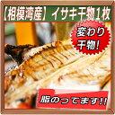 【相模湾産】イサキ干物 1枚〜塩焼きが美味いんだから、干物はもっと美味い!