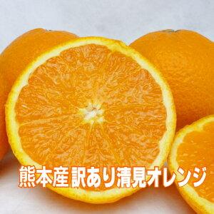 【送料無料】熊本県産訳あり清見オレンジ2Lサイズ24個入り(約5kg)山下果樹園北海道は送料別途1800円、沖縄は別途1000円かかります。