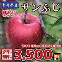 【送料無料】青森県産 サンふじ 訳あり 10Kg(約10キロ)  晩生種りんご 食品 果物 フルーツ お取り寄せグルメ