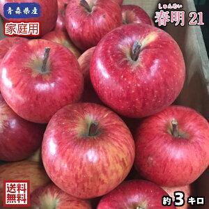 【送料無料】今だけ特別価格!!数量限定!お試し品!青森県産 春明21 家庭用 3Kg(約3キロ)  晩生種りんご 食品 果物 フルーツ お取り寄せグルメ