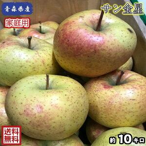 【送料無料】数量限定!青森県産 サン金星 家庭用 10kg(約10キロ)  晩生種りんご 食品 果物 フルーツ お取り寄せグルメ