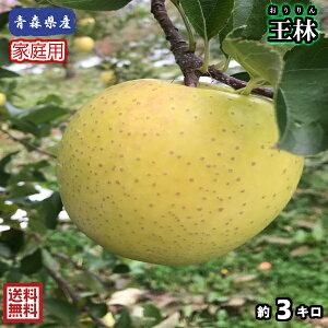 【送料無料】お試し品! 青森県産 王林 家庭用 3Kg(約3キロ)  晩生種りんご 食品 果物 フルーツ お取り寄せグルメ