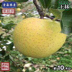 【送料無料】青森県産 王林 家庭用 10Kg(約10キロ)  晩生種りんご 食品 果物 フルーツ お取り寄せグルメ
