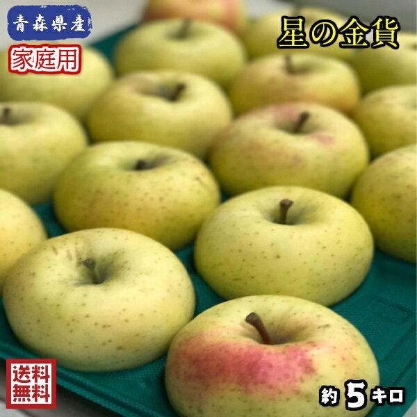 【送料無料】数量限定!青森県産 星の金貨 家庭用 5kg(約5キロ)  晩生種りんご 食品 果物 フルーツ お取り寄せグルメ